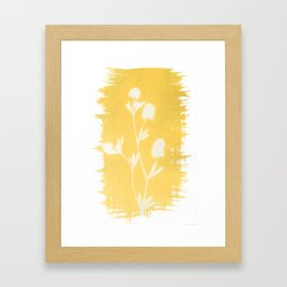 Herbal Sunprint #6 Framed Art Print