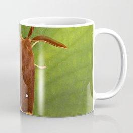 "Colorful moth ""Lasiocampa quercus"" Coffee Mug"