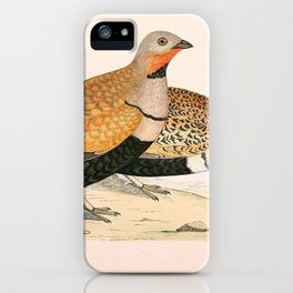 SAND GROUSE (2) iPhone Case