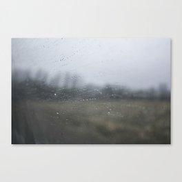 Raindrops on the Window Canvas Print
