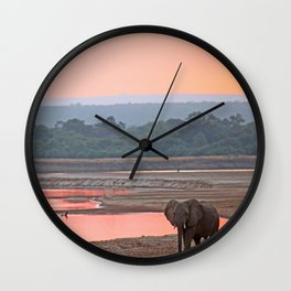 Walk in the evening light, Africa wildlife Wall Clock