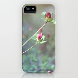 Flowers in the window 03 iPhone Case