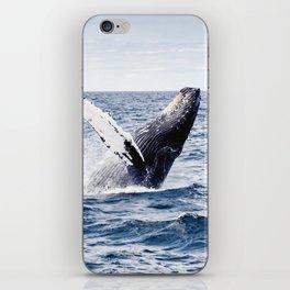 Humpback Whale Ocean iPhone Skin