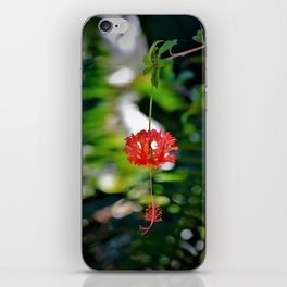 Like a Red Lantern Blowing in the Wind iPhone Skin