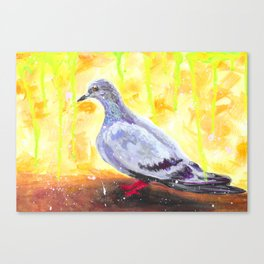Abstract And A Pigeon  Canvas Print
