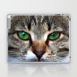 Staring Cat Laptop & iPad Skin