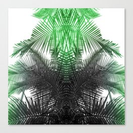 green and gray fern Canvas Print