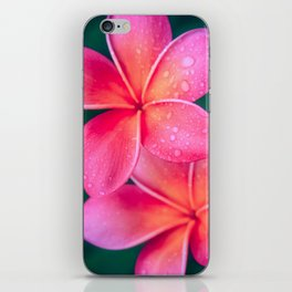 Aloha Hawaii Kalama O Nei Pink Tropical Plumeria iPhone Skin