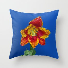 Flower tulip terry in spring Throw Pillow