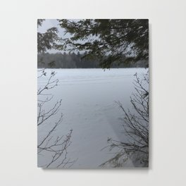 Winer Thought the Trees Metal Print