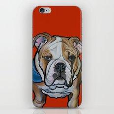 Johnny the English Bulldog iPhone & iPod Skin