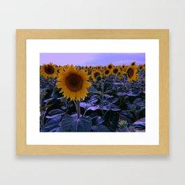 sunflower wonderland Framed Art Print