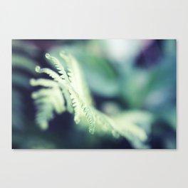 Figment Canvas Print
