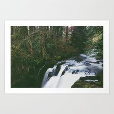 Woodland Creek Art Print