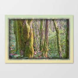 WARM AUTUMN RAINFOREST Canvas Print