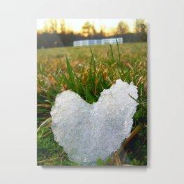 Heart of Ice Metal Print