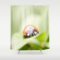 ladybug Shower Curtains featuring Ladybug by Christine baessler