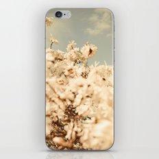 Aspiring to be a Cloud iPhone & iPod Skin