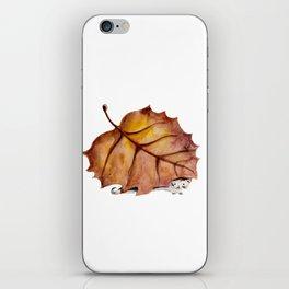 Autumn Cat iPhone Skin