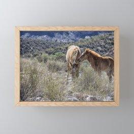 Salt River Mare and Her Colt, No. 1 Framed Mini Art Print
