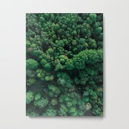 Trees from above   Forest fine art photography   Aerial drone photo print Metal Print