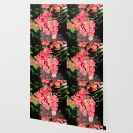 Hot Coral Floral Wallpaper