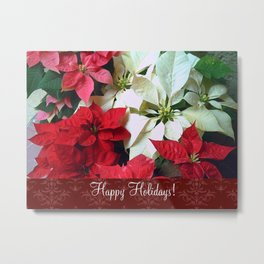Mixed color Poinsettias 1 Happy Holidays S5F1 Metal Print
