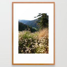 Lake Arrowhead Framed Art Print