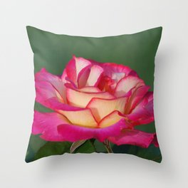 Pink lined Rose Throw Pillow