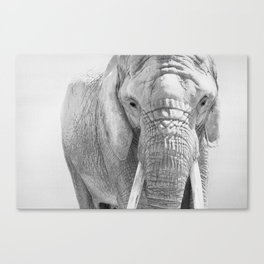 Elephant Photography | Wildlife Art | African | Nature | Animal Photography | Black and White Canvas Print