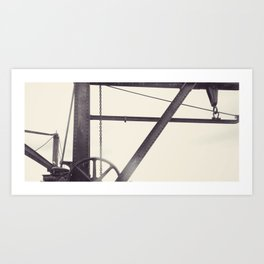 Cockatoo 19 Art Print