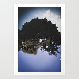 Los bosques Art Print