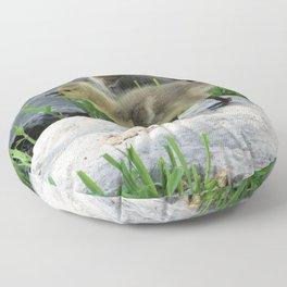 Making Honking Noises Floor Pillow
