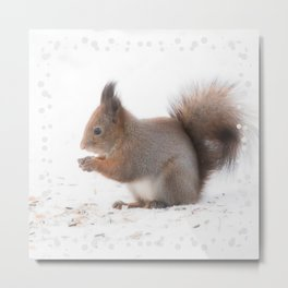 Squirrel And Lunch Pause Winter Scene #decor #society6 #buyart Metal Print