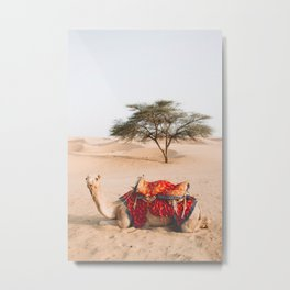 Camel in the Thar Desert in Rajasthan, India | Travel Photography | Metal Print