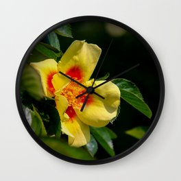 simply colourful Wall Clock