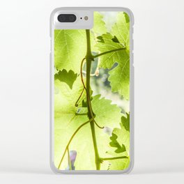 At the vineyard Clear iPhone Case