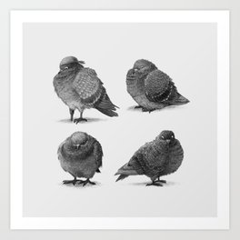 Pirate Pigeon & Crew Art Print