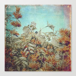 Vintage Garden Canvas Print