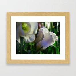 Lisianthus single Framed Art Print