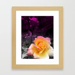 Gracefulness Framed Art Print