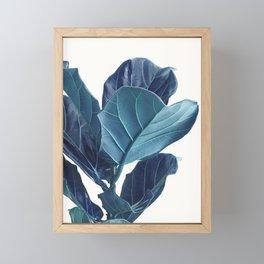 Fiddle Leaf Fig Plant, Blue Minimalist Nature Photography Framed Mini Art Print