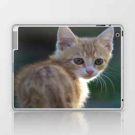 Gatto Rosso - Red Cat Laptop & iPad Skin
