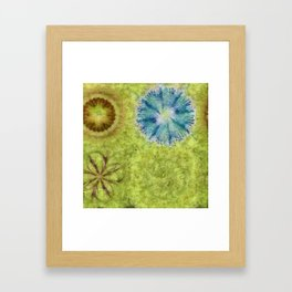 Empurples Mental Picture Flower  ID:16165-094016-44020 Framed Art Print