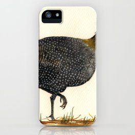 Guineal fowl iPhone Case