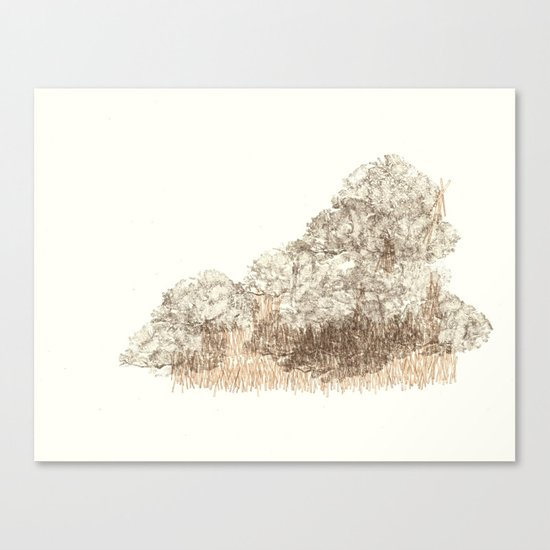 Untitled (Cloudy) Canvas Print