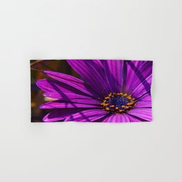 Purple African Daisy Close Up Hand & Bath Towel