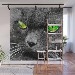 persian cat great eyes evil look vector art Wall Mural