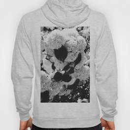 Black and White Snowballs Hoody