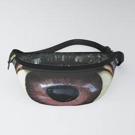 The Mind's Eye Fanny Pack